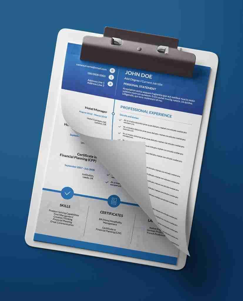 Cv Format For Job Applications Long Timeline 2 Page Resume